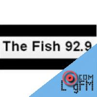 Update the information cfsh fm for The fish radio station
